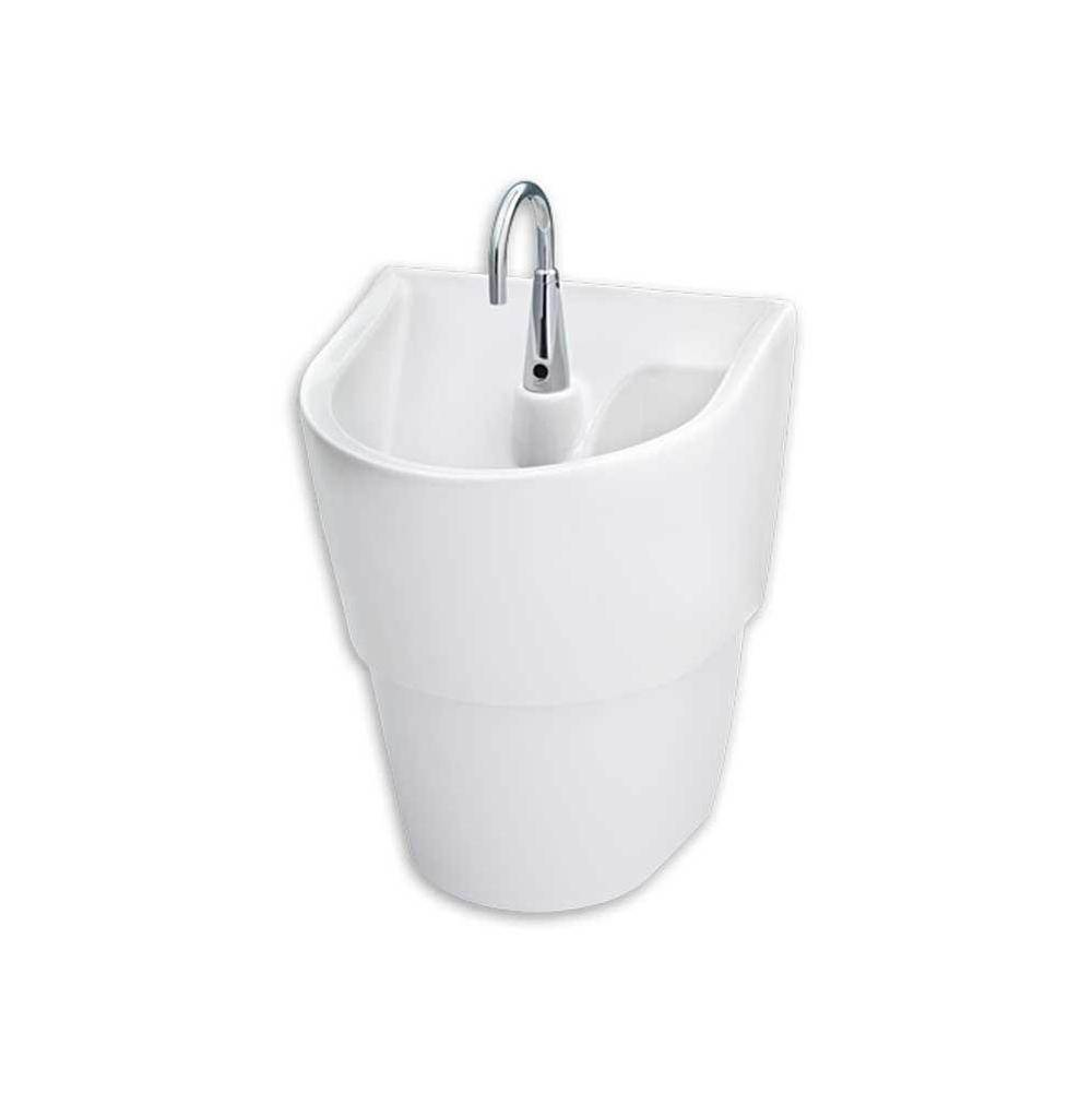 American Standard Canada Wall Mount Bathroom Sinks item 9118111.020