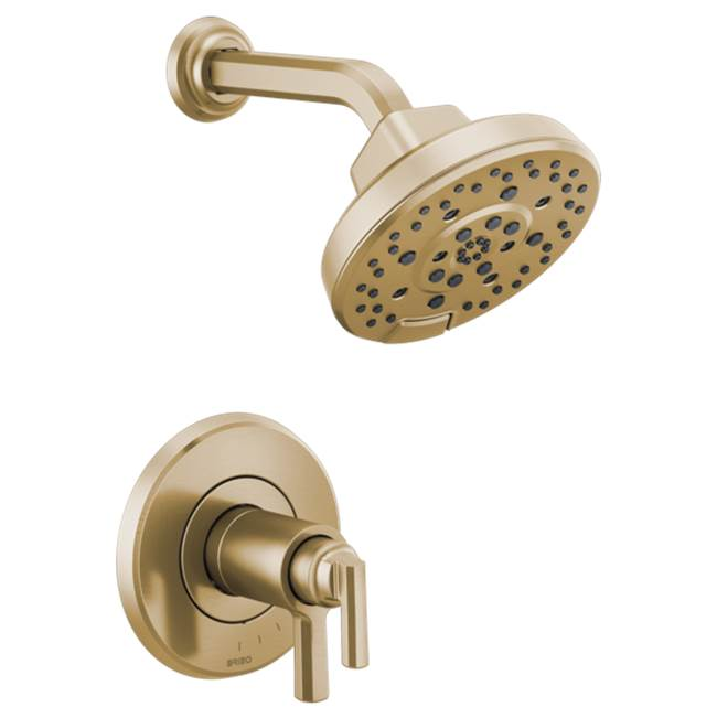 Brizo Canada Pressure Balance Valve Trims Shower Faucet Trims item T60298-GL