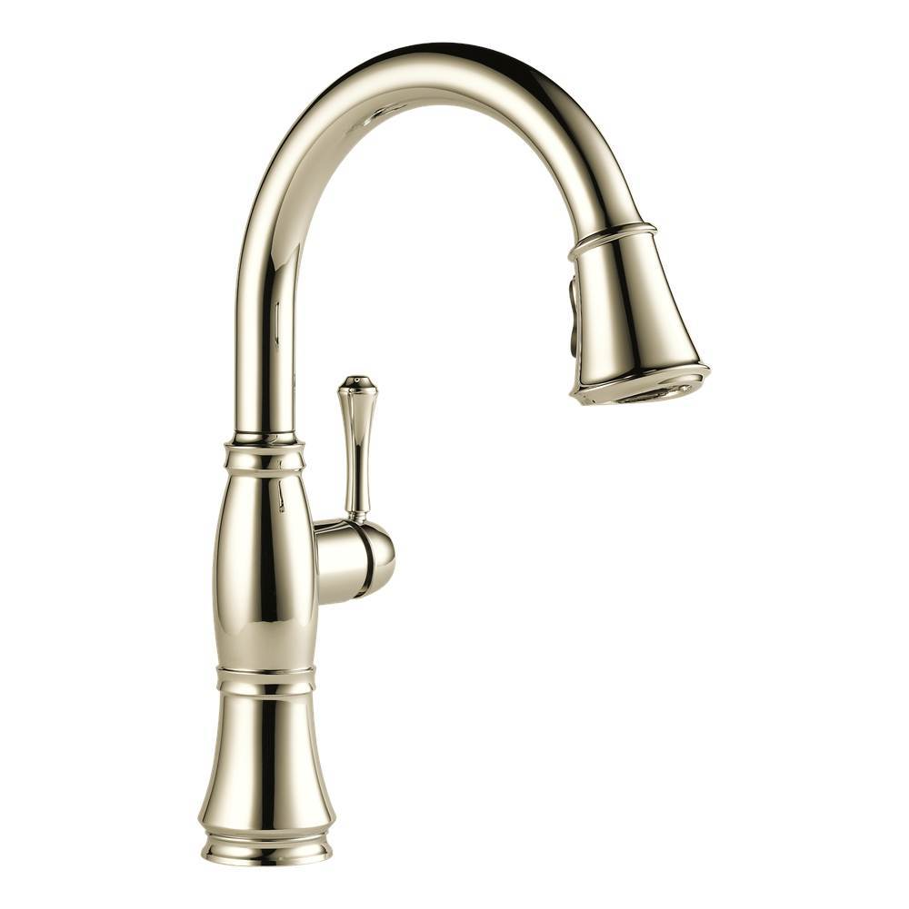 Delta Canada Single Hole Kitchen Faucets item 9197-PN-DST