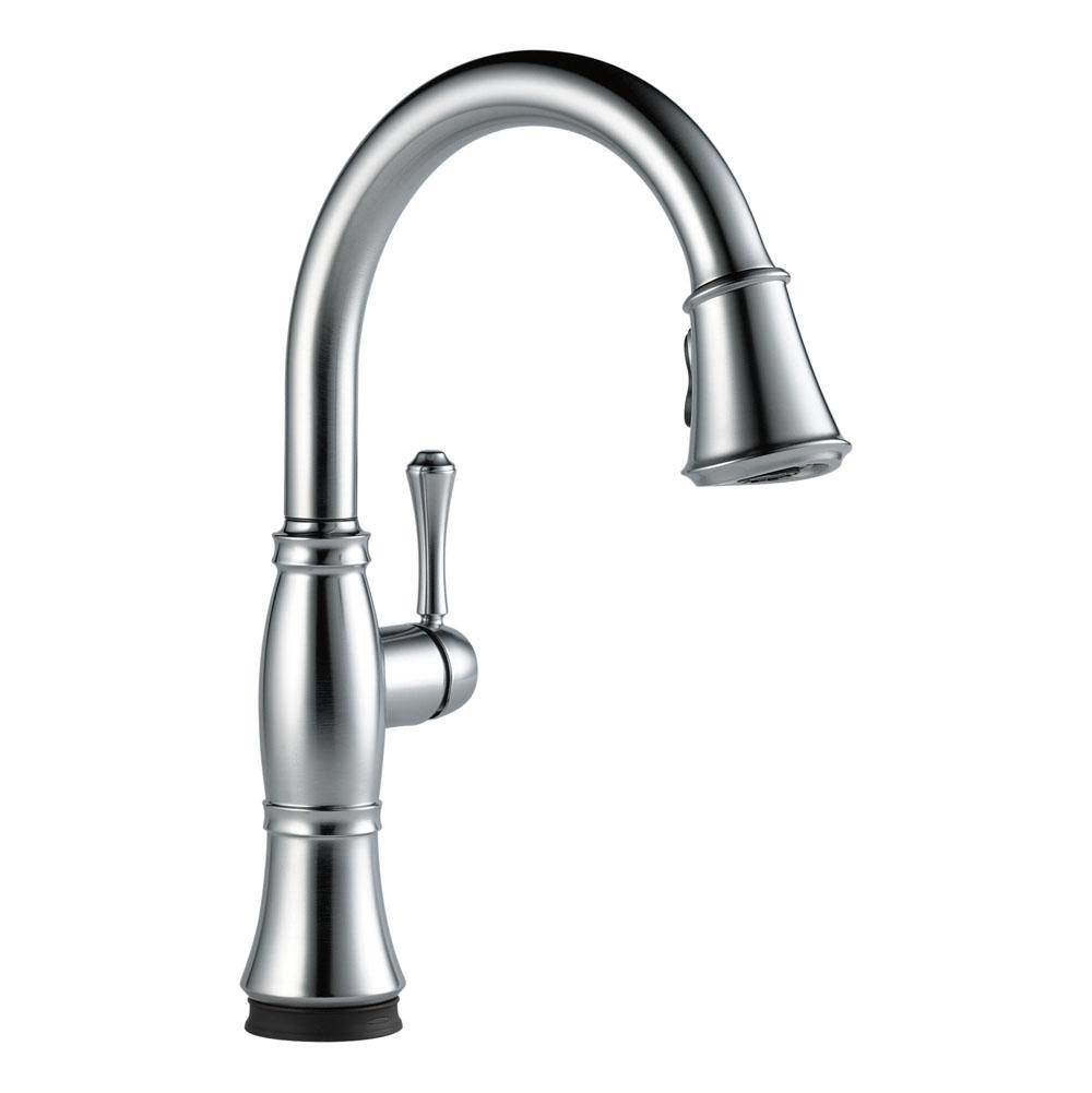 Delta Canada Single Hole Kitchen Faucets item 9197T-AR-DST
