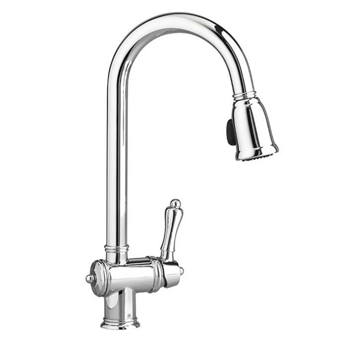 DXV Retractable Faucets Kitchen Faucets item D35402300.100