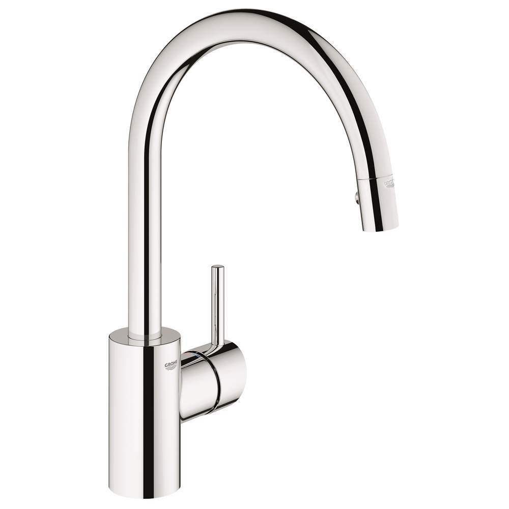 Grohe Canada Single Hole Kitchen Faucets item 32665001
